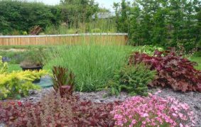 Garden Design img 5